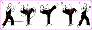 3-Tips-to-Improve-Your-Side-Kick